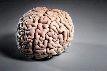 Мозг и пси-способности