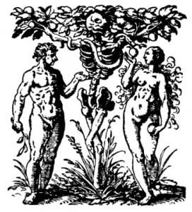 """Дерево: """"Древо познания"""" в раю в виде символа смерти. Книжный знак. Франкфурт, 1531 г."""
